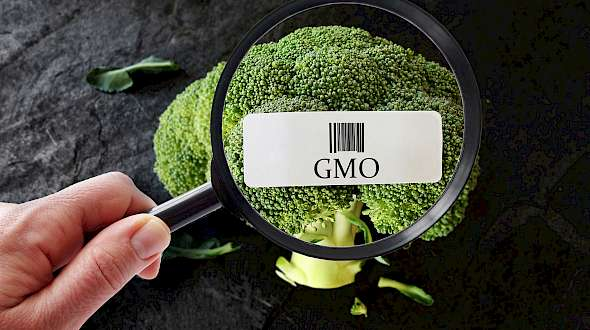 What Will Happen After We Have GMO, or BE, Food Labels?