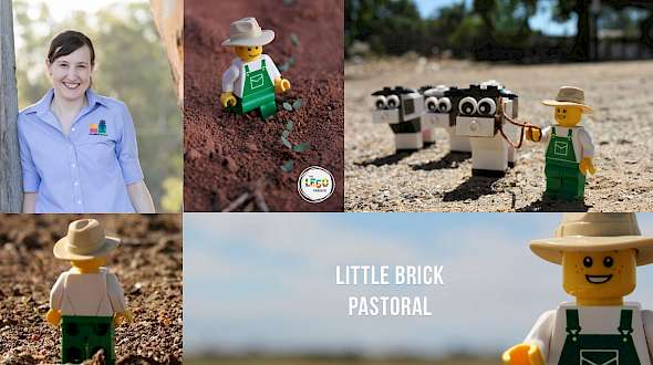 Kids Love Legos And So Do Farmers