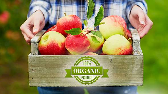 Does Eating Organic Food Reduce Cancer Risk?