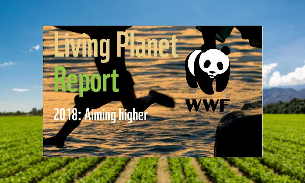World Wildlife Fund's Living Planet Report is out