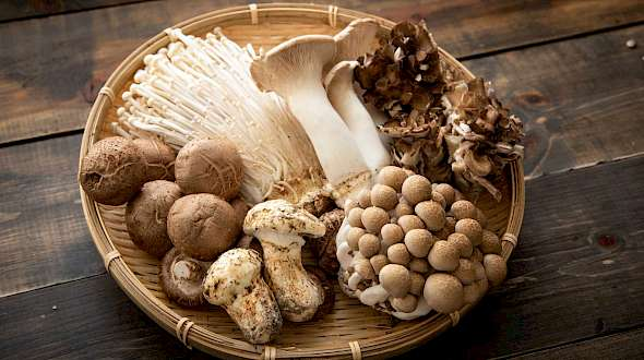 Future Food Mushrooms and A Winning Recipe!