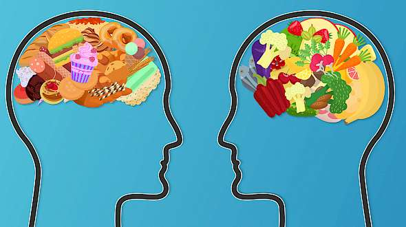 """You Are What You Eat"" Includes Our Brains"