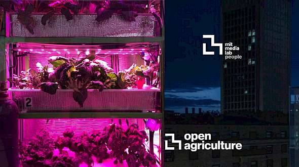 Has the M.I.T. Media Lab's OpenAG Project Sent Us Backwards?