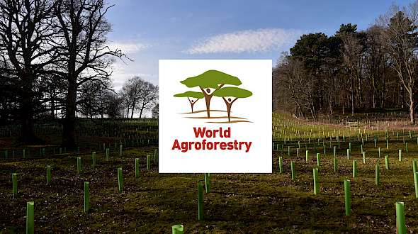 You Better Learn More about Agroforestry