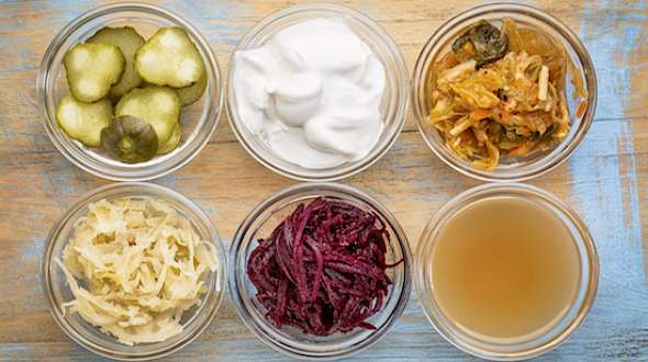 Probiotics 101: Not All Fermented Foods Are Created Equal
