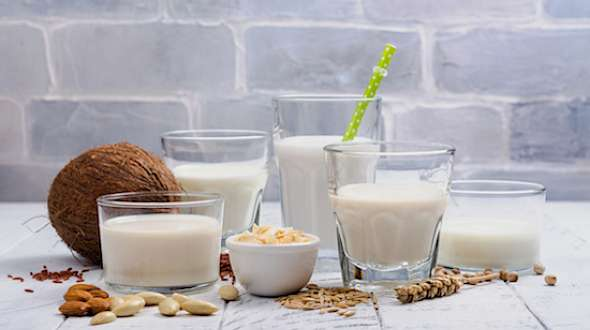 Plant-Based Milks You Need to Know